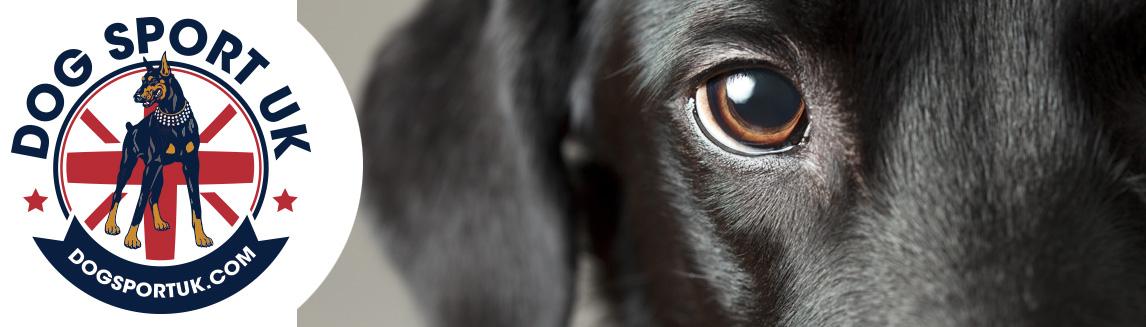 Dog Sport UK 2