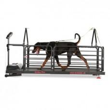 Dog Runner – Ortho Pro