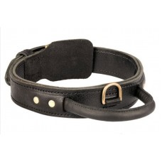 Leather Protection Agitation Collar