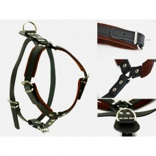 Raddog Harness Leather Harnesses